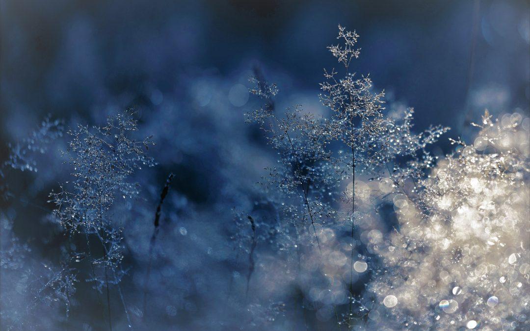A négyévszak egészség megörzés : tél